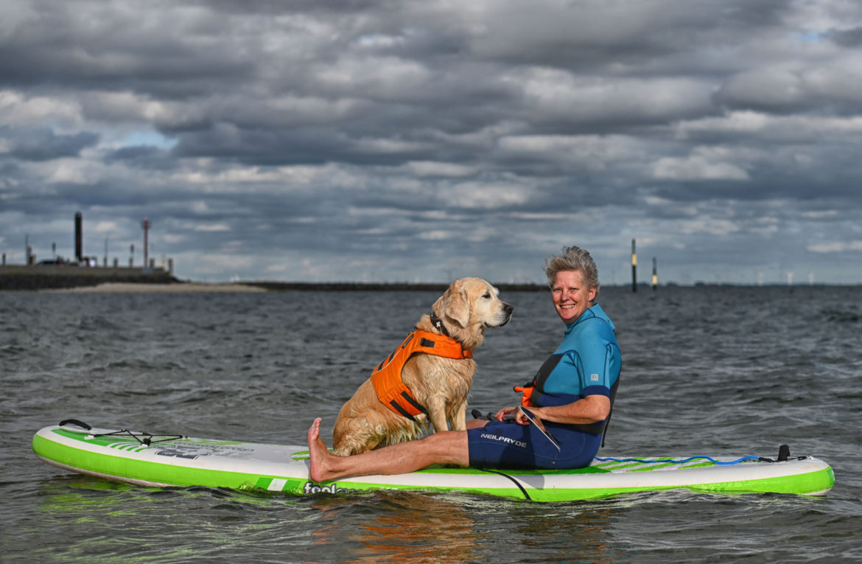 Seehunde – SUP mit Hund